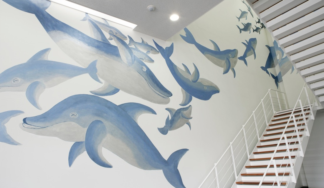 〈Smiling Dolphins〉